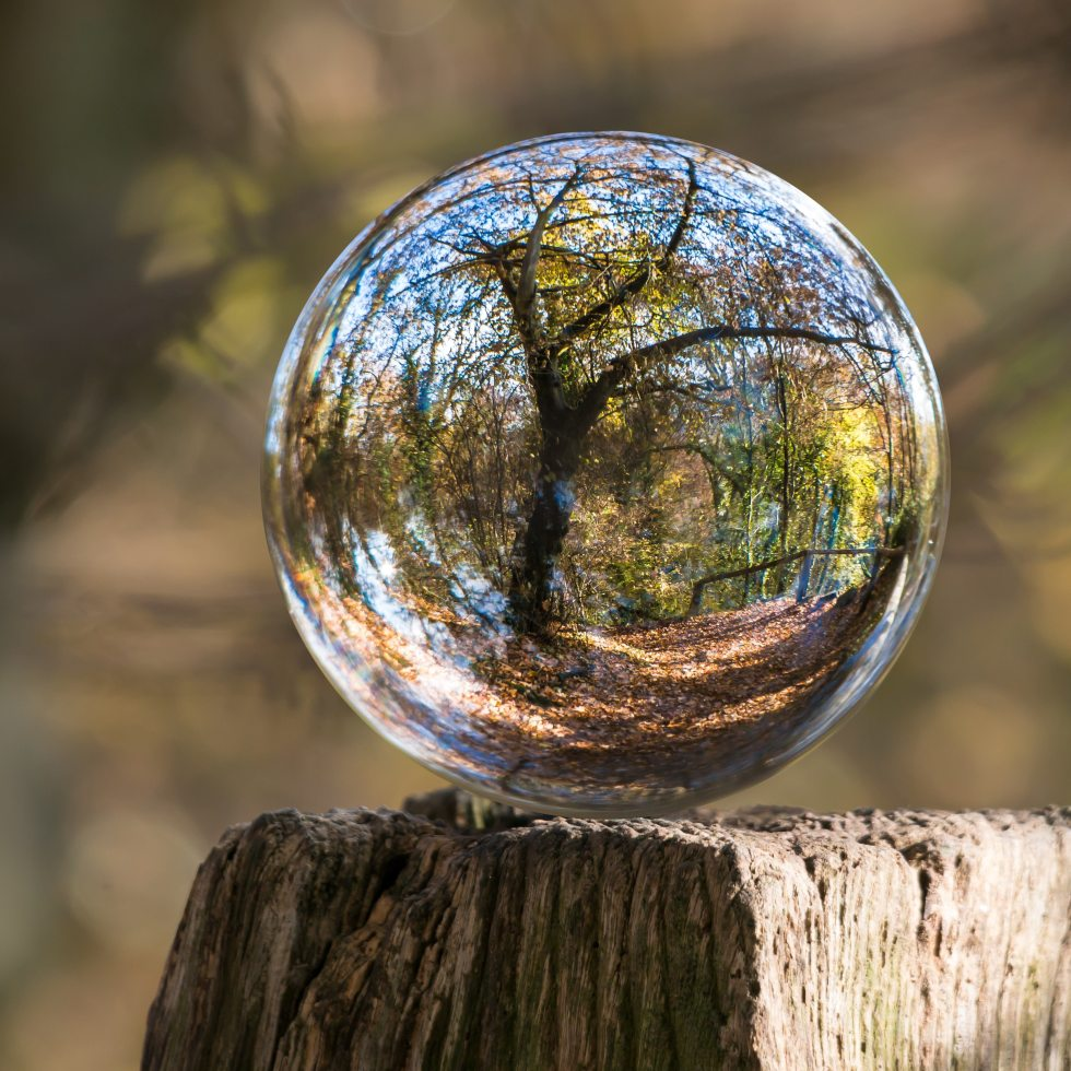 landscape view through globe bubble